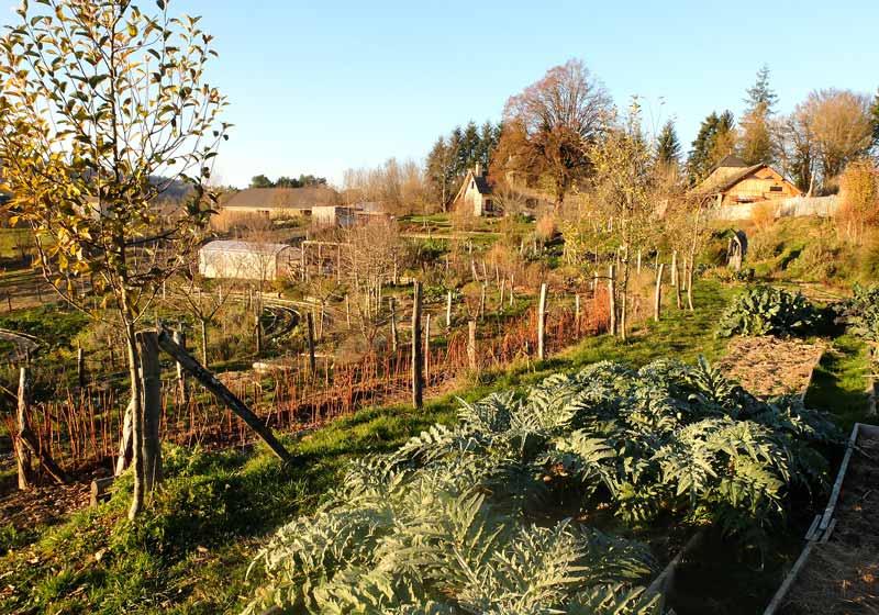 Diversification jardin Battement d'Ailes
