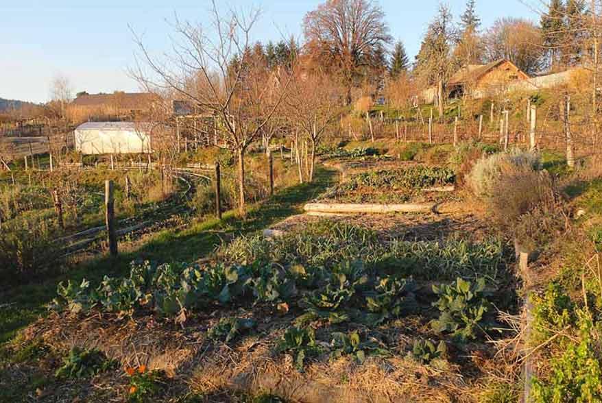 Jardin Battement d'Ailes